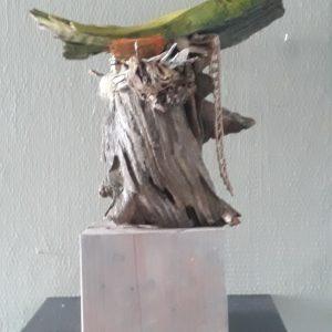Vogelnest 1