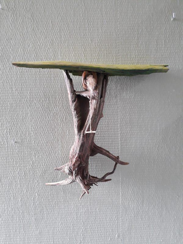 Vogelnest 3